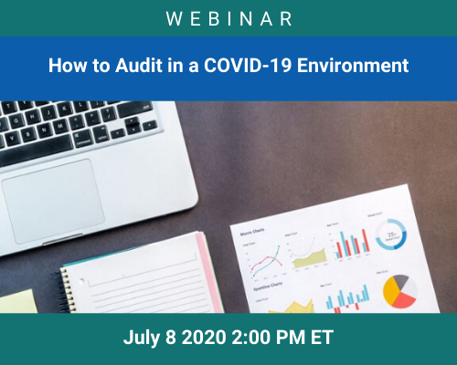 MGI Audit webinar